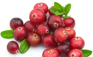 Photo of Fresh Cranberries