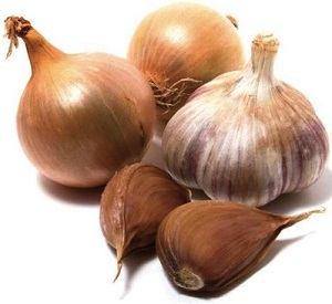 Photo of Onion and Garlic