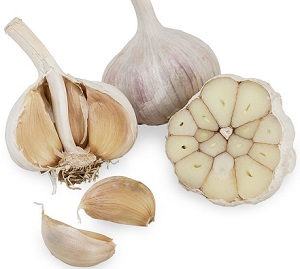 Photo of Fresh Garlic
